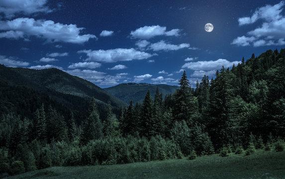 night over carpathian mountains