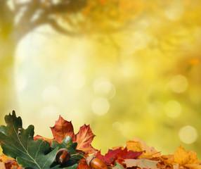 Wall Mural - autumn