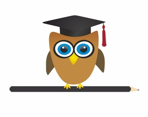 Graduate owl and pencil - vector
