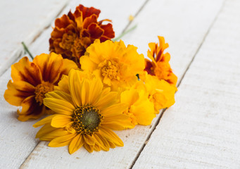 Autumn flowers on table