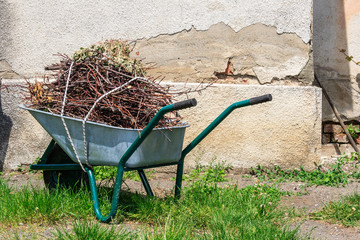 wheelbarrow near the old wall