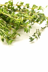 fragrant fresh green thyme on  white background