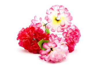 Verschiedene Blumen auf weißem Hintergrund