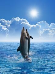Tuinposter Dolfijnen Dolphins jumping