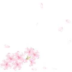 桜 舞い散る 花吹雪