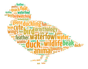 Words illustration of a duck over white background