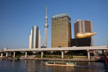 Sumida Skyline with Tokyo Sky Tree