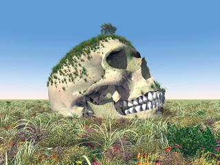 Menschlicher Schädel in einer Landschaft