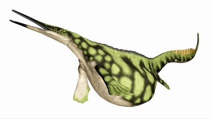 Meeresreptil Hupehsuchus