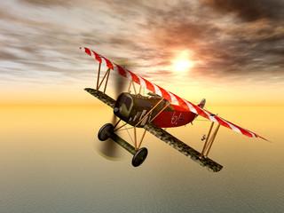 Deutsches Jagdflugzeug aus dem ersten Weltkrieg