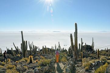 ile aux cactus d'Uyuni