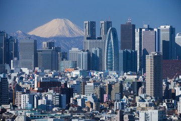 Fototapete - 富士山と新宿の高層ビル群