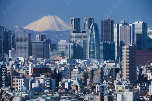 Wall mural 富士山と新宿の高層ビル群