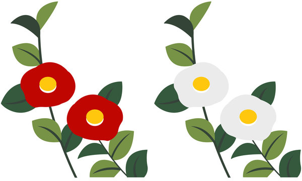 椿 赤 白
