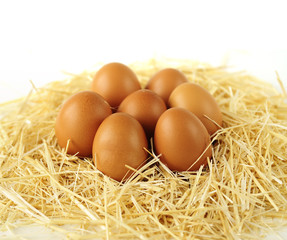 brown organic eggs on straw