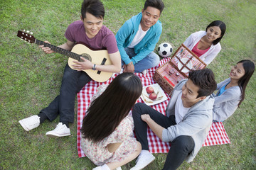 Six friends having a picnic and hanging out in the park, playing guitar and talking