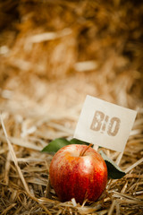 """Tasty red apple on straw, tagged as """"bio"""" product"""