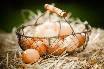 Fresh brown eggs in a metallic basket on straw