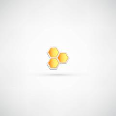 Honey icon isolated on white