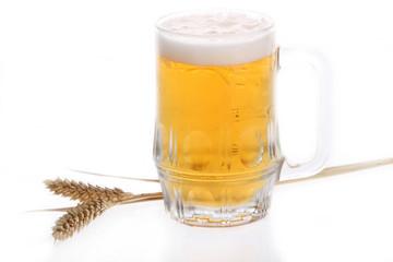 Fototapete - mug of beer