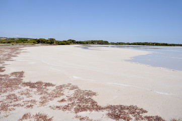 Salt lake in Coorong National park, Southern Australia