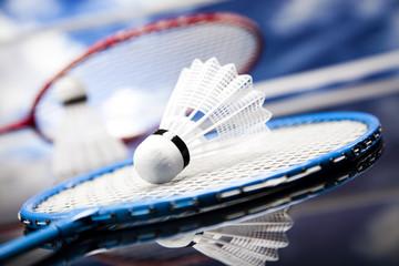Badminton shuttlecock
