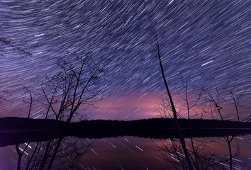 Fototapete - Star trails along lake with trees