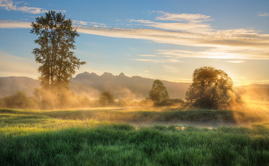 Fototapete - Yellow Mist At Sunrise with Background Mountains