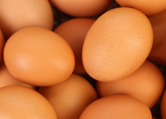 Background of brown eggs. Close up.
