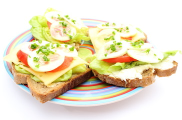 Closeup of sandwich with cheese and vegetables