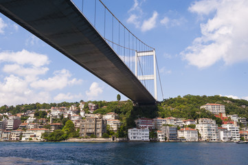 Suspension bridge support over a river