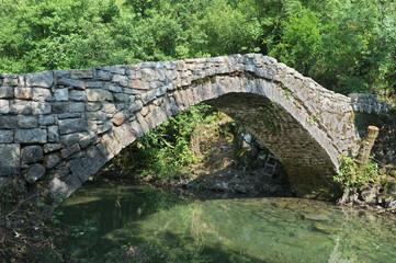 Old Bridge On The Orahovo River, Montenegro