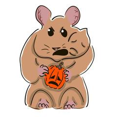 Angry hamster eats small pumpkins