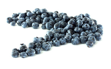 Blueberries isolated on white