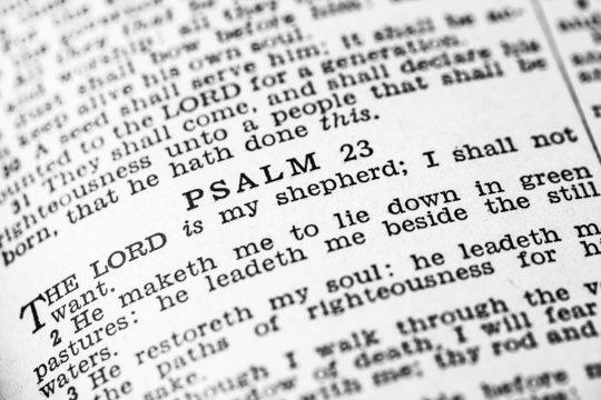 Holy Bible Psalms