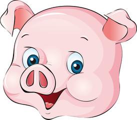 Schwein Kopf