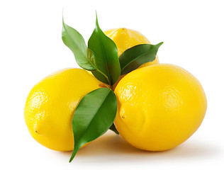 Three ripe bright lemon