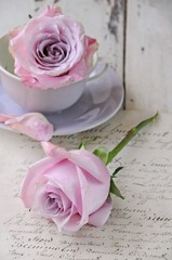 Wall Mural - Rose auf Brief