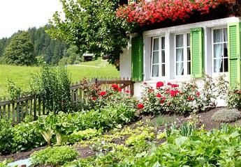Im Bauerngarten