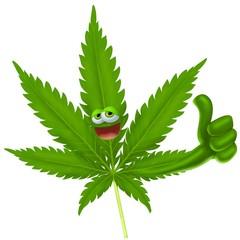 Fototapete - marijuana