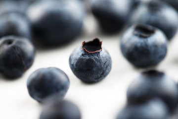 Organic blueberries on a white ceramic surface