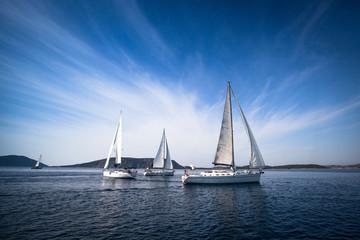 Cruise sailing. luxury yachts.