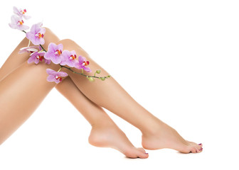 Long woman legs and orchids isolated on white background.