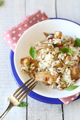 rice with fried mushrooms, top view