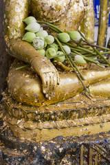 Buddha hand in ancient pagoda, Thailand