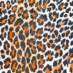 Background of texture animal.