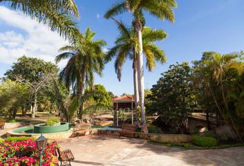 Kuba Havanna öffentliche Grünanlage