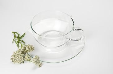 Leere Glastasse und Schafgarbenblüten