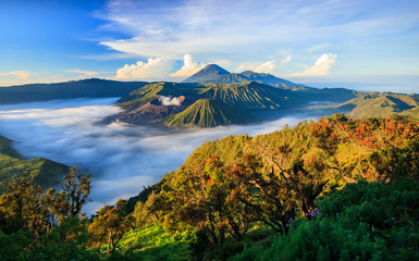 Self adhesive Wall Murals Indonesia Bromo vocalno at sunrise, East Java, , Indonesia