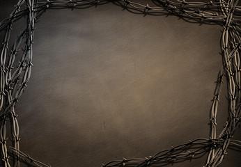 Barbed frame